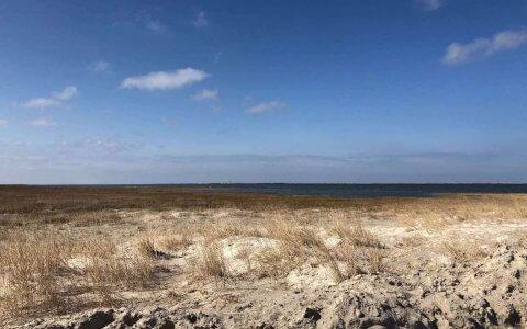 Strand in Neßmersiel mit Blick nach Norderney, Meer, Dühnen